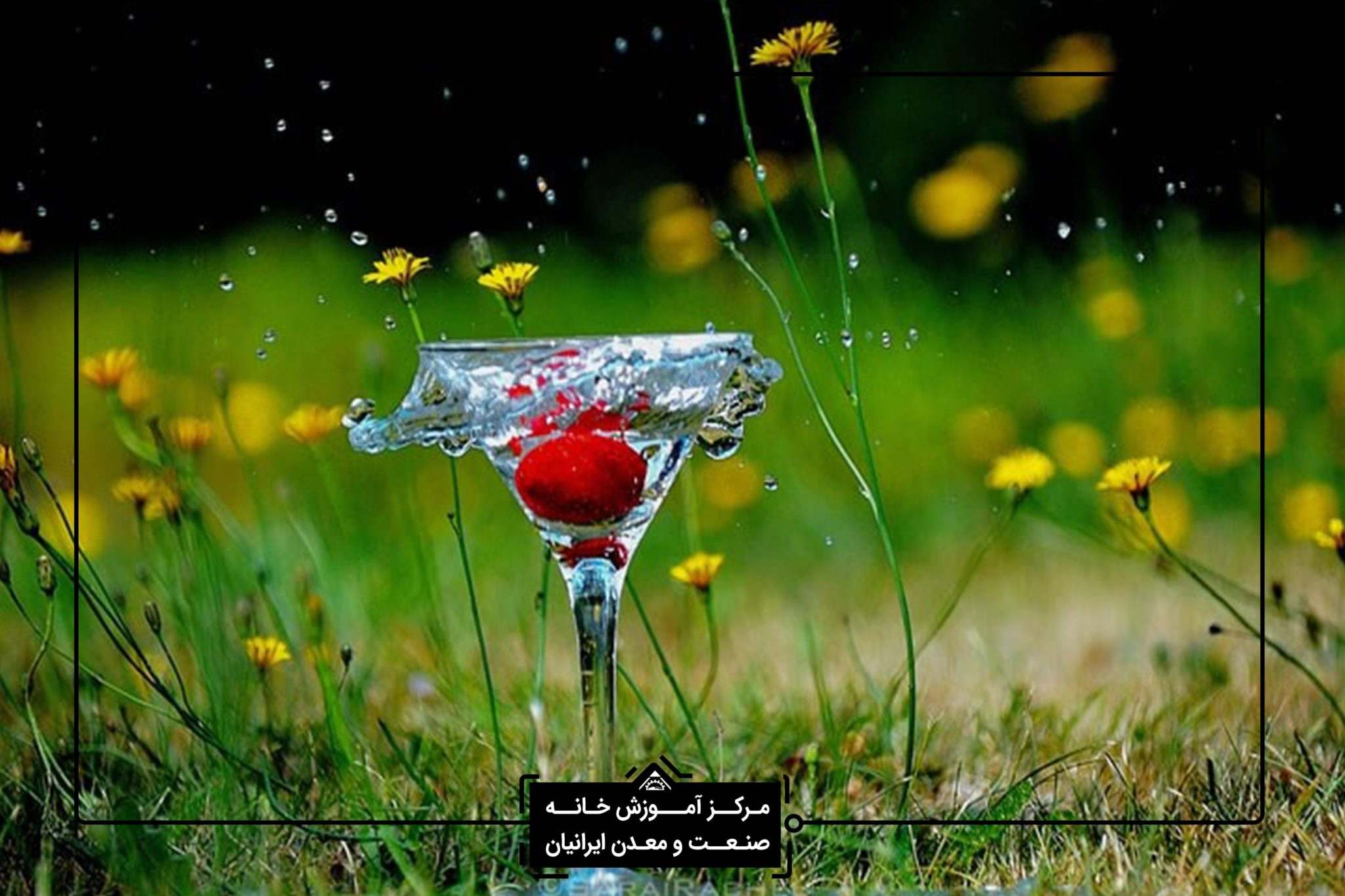 عکاسی در شیراز - آموزش عکاسی تخصصی در شیراز