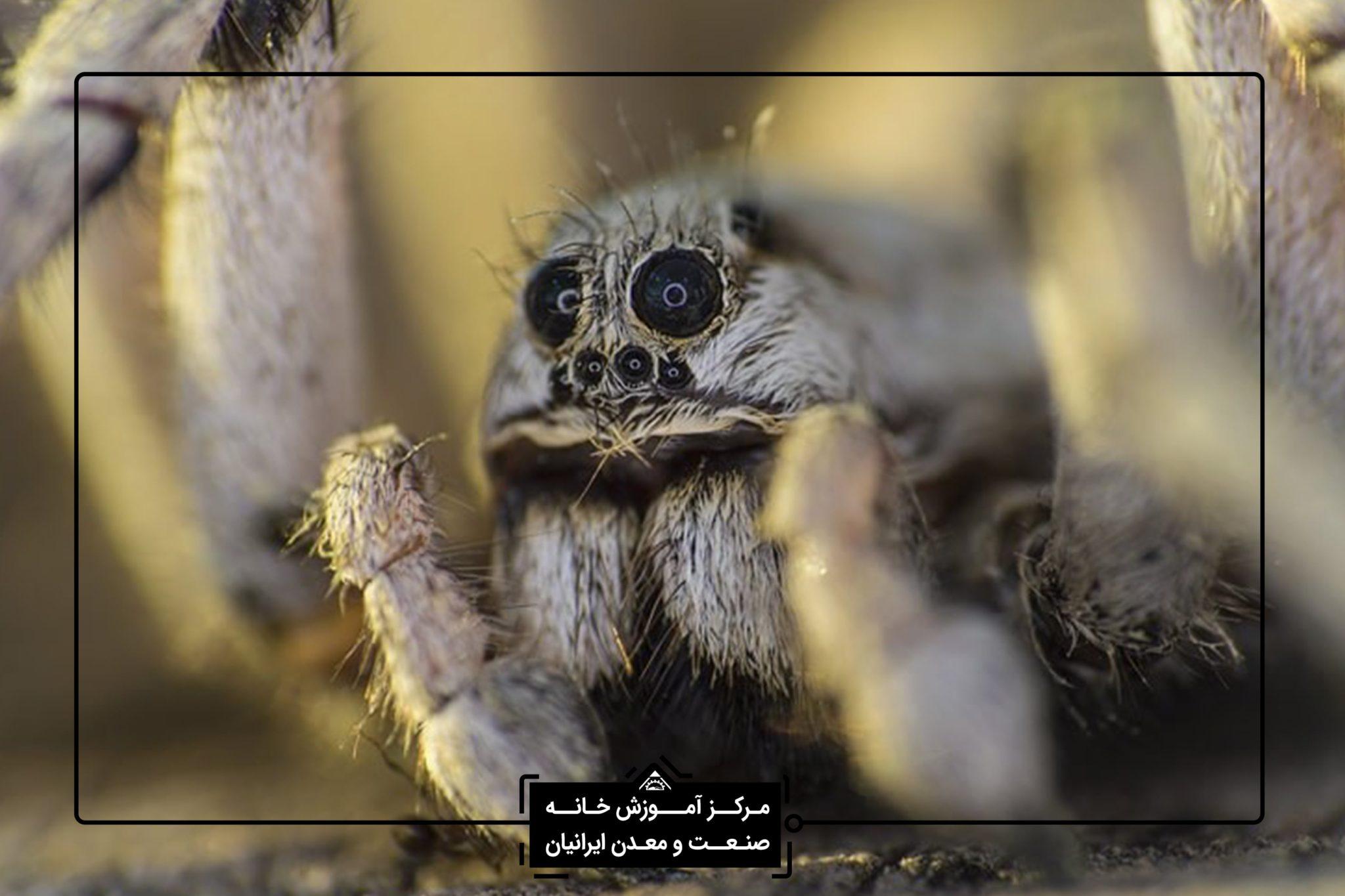 تخصصی در شیراز - آموزش عکاسی تخصصی در شیراز